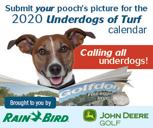 2020 Underdogs Calendar - Submit your photo today!